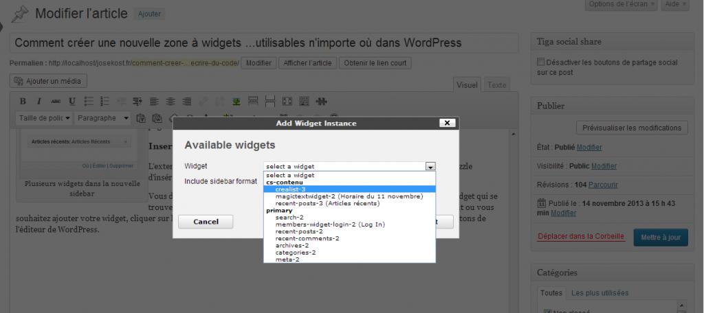 fenetre widget instance 1024x456 Comment créer une zone à widgets et afficher un widget WordPress dans un page
